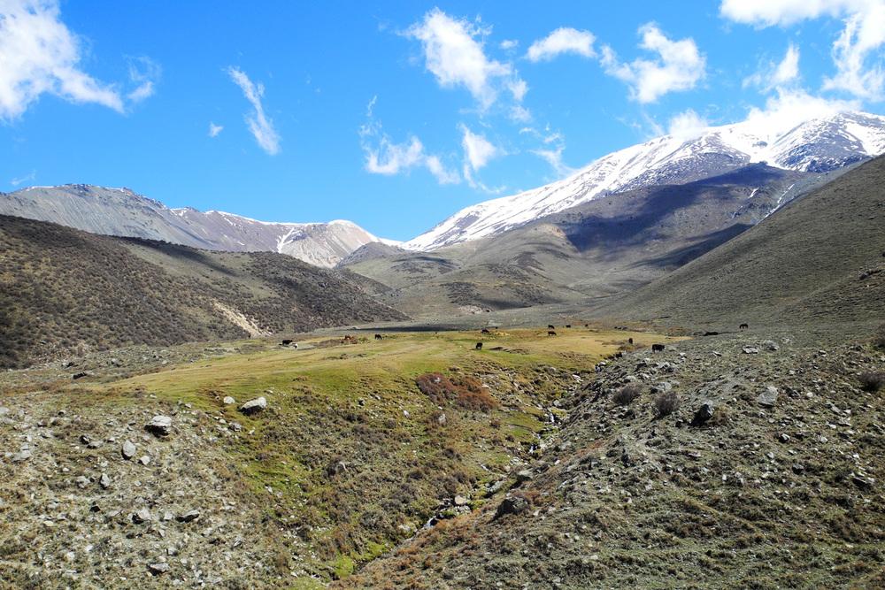 wine-TROTTERS_oenotourisme_wine-tourism-agency_tour_vino_vin_turismo_ARGENTINA_Mendoza_trekking_hiking_horseback-riding_alta-montana_Andes_96_WEB-2000px.jpg