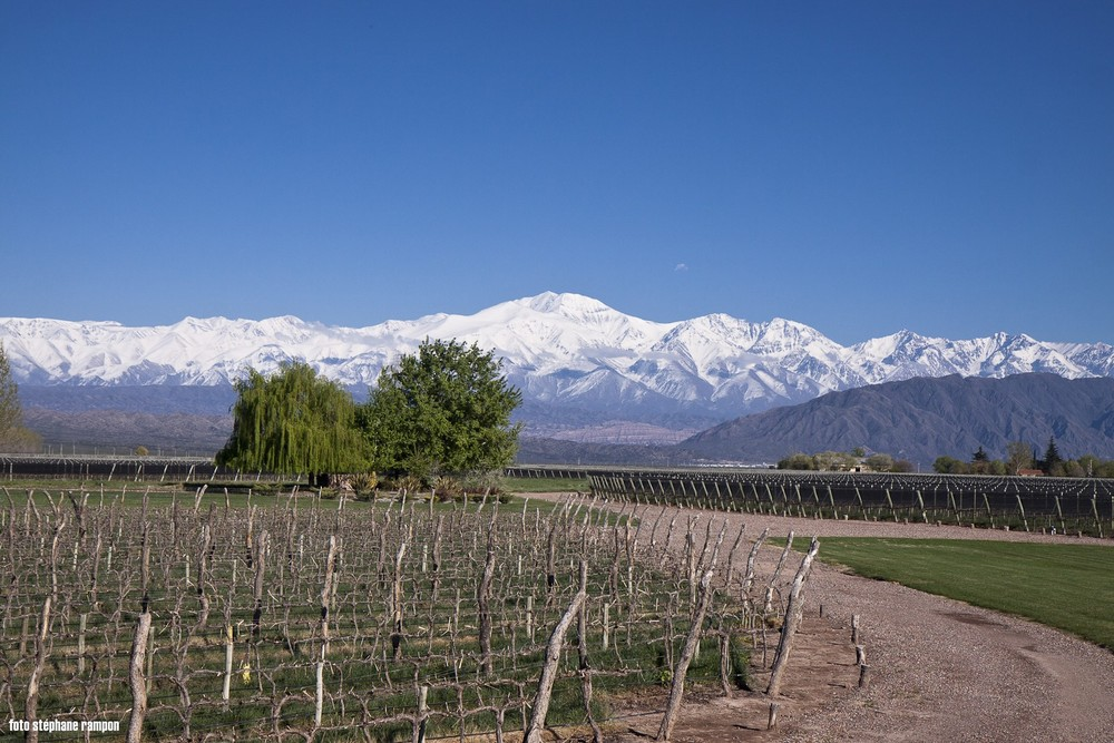 wine-TROTTERS_wine-tourism-agency_tour_wineries_vineyards_gastronomy_passion_Andes_37.jpg