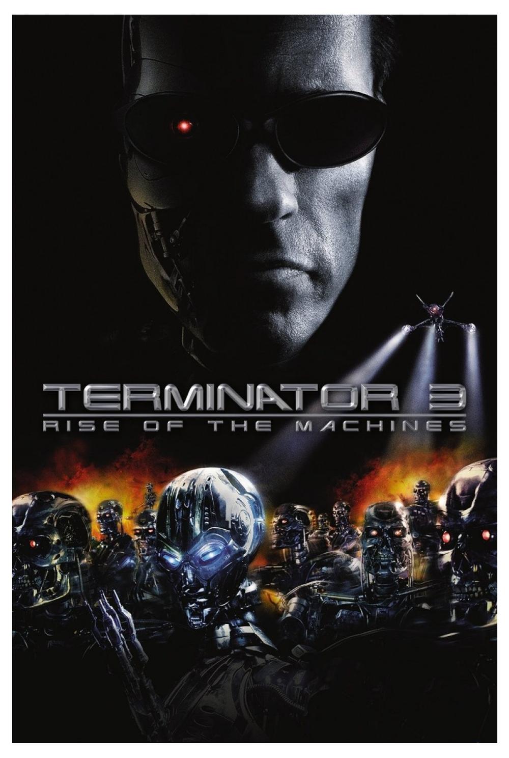 terminator 3.png