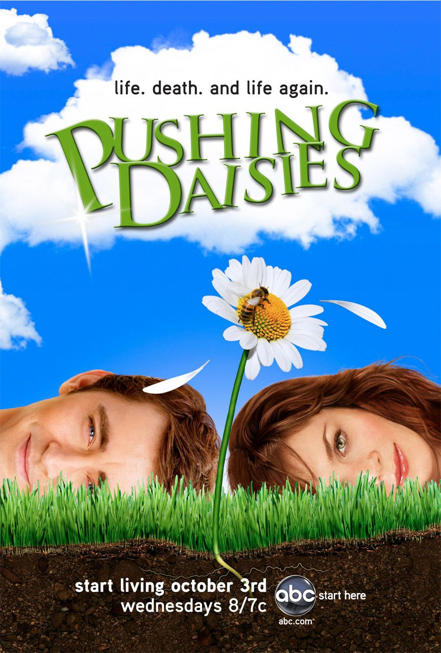 pushing daisies.jpg