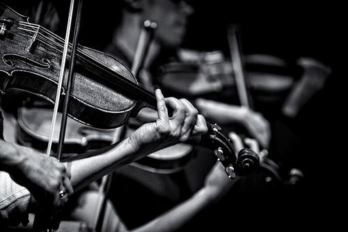 violinist.jpg