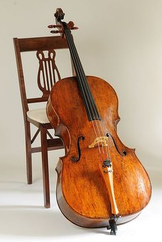 865da0f33f2e1be1148a8b3ea04408e6--cello-music-violin.jpg