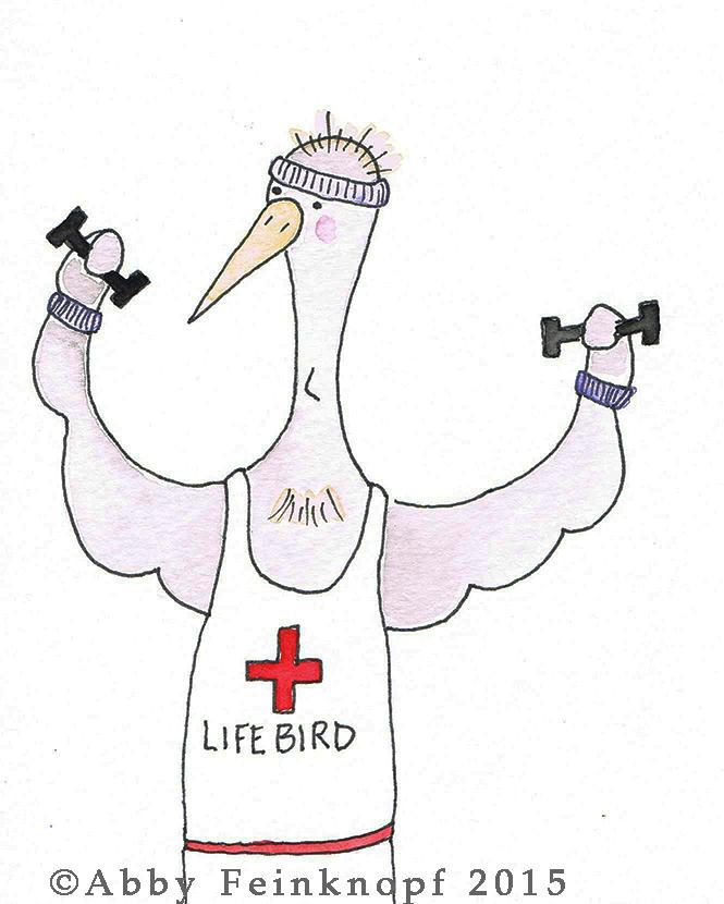 lifebirdWM.jpg