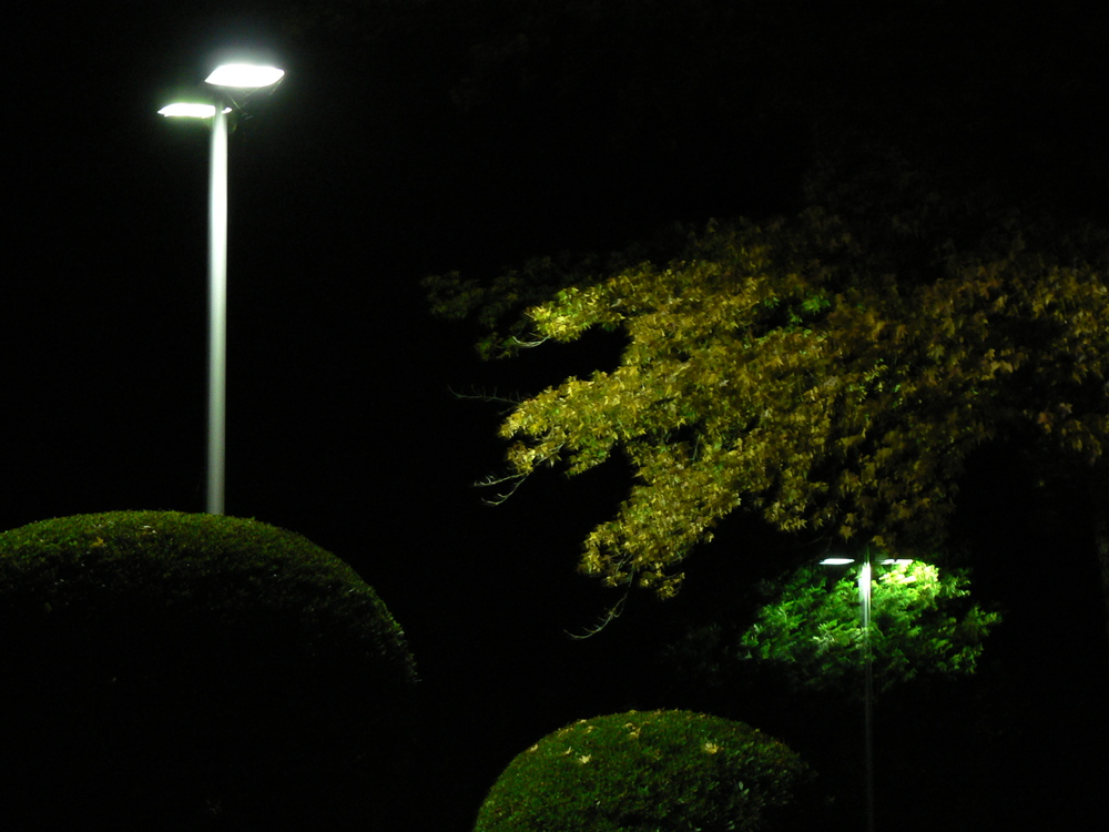 Cascade Lighting Pictures Web Site 005.JPG