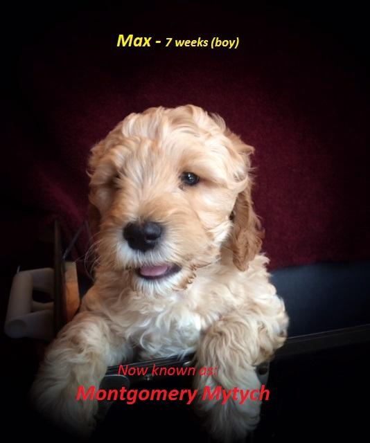 Max 7 weeks.jpg