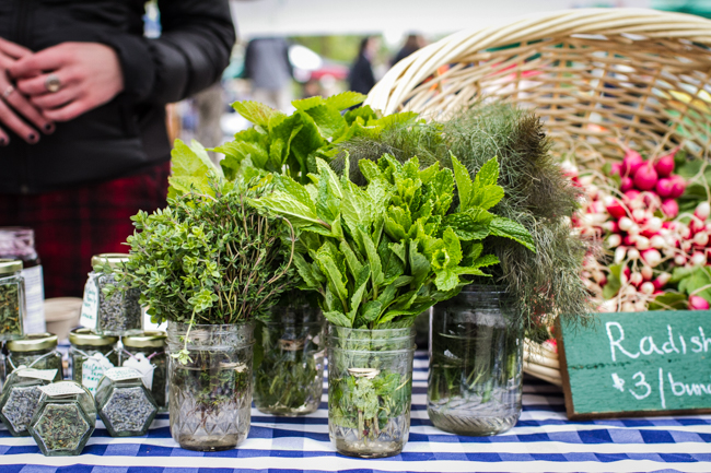 10 Farmers' Market Tips | edibleperpsective.com