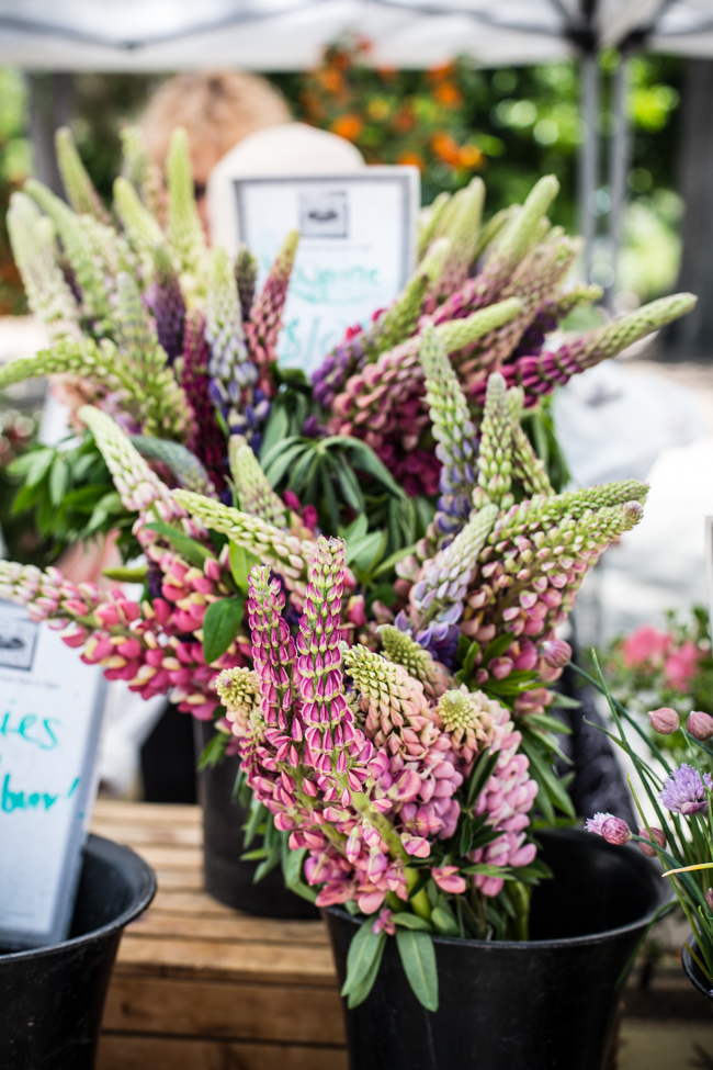 10 Farmers' Market Tips | edibleperspective.com