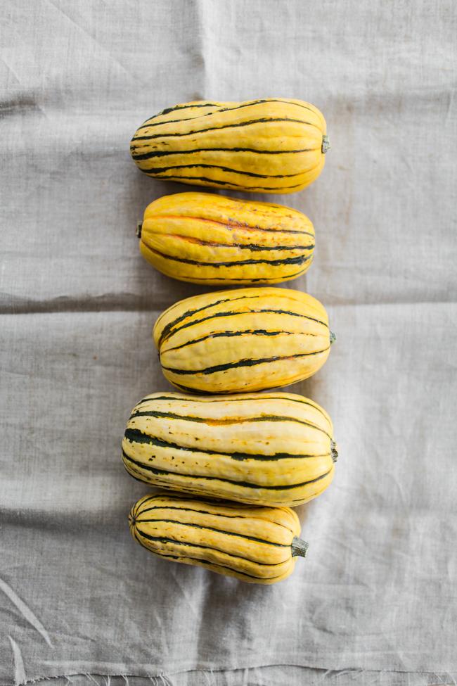 Delicata Squash | edibleperspective.com