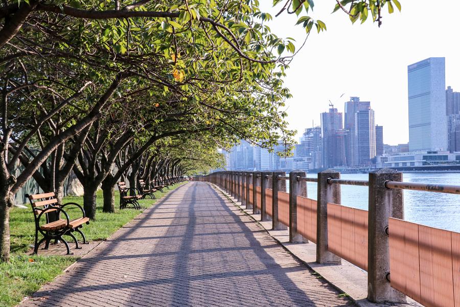Roosevelt Island - Park