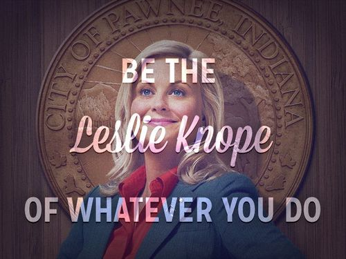 """These people are members of the community that care about where they live. So what I hear when I'm being yelled at is people caring loudly at me."" - Leslie Knope,  Parks & Recreation"