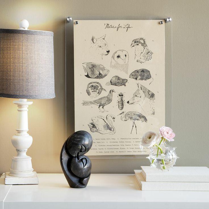 acrylic frames sarah catherine design