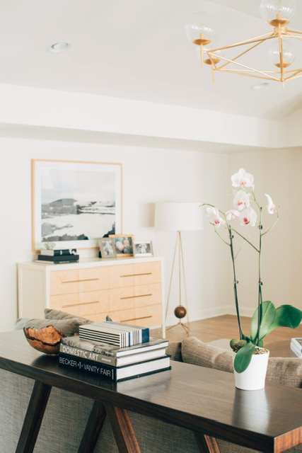 My First Solo Client | Sarah Catherine Design