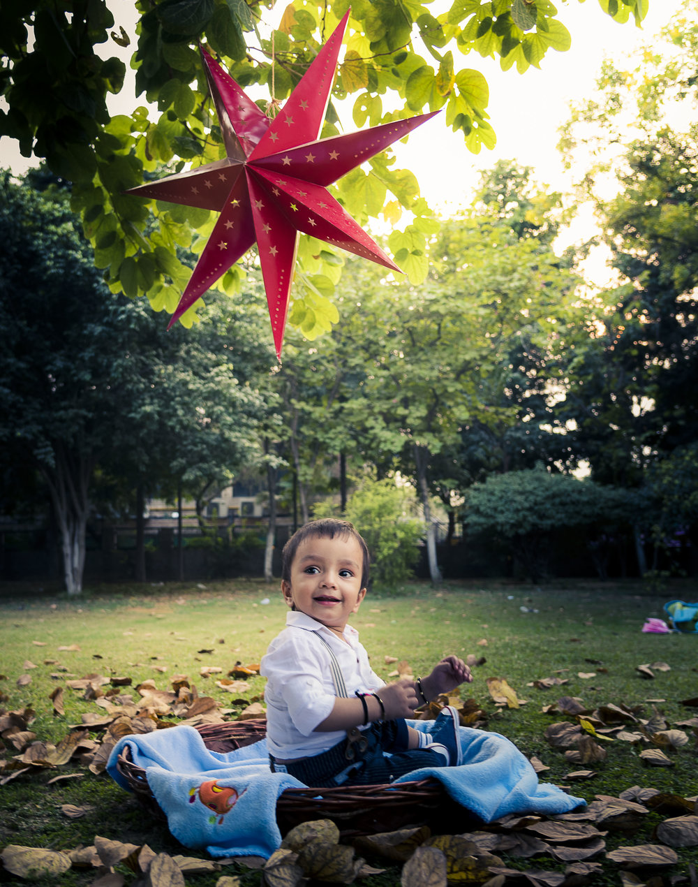 Baby Shoots  - Themes/ConceptsOutdoor/IndoorCoffee Table Books & Posters
