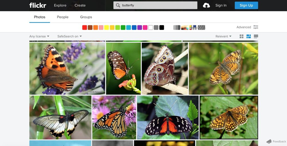 Flickr has so much eclectic content that a multi-page format would be too difficult to navigate.