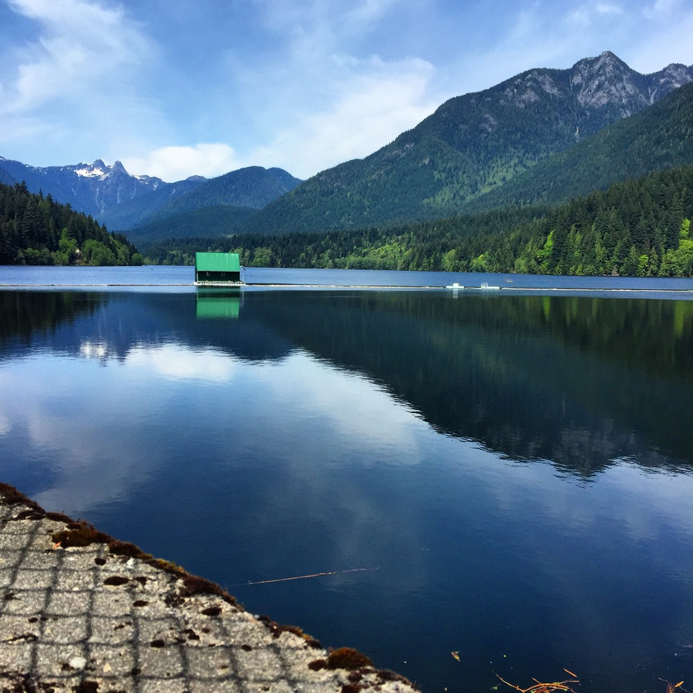 Here's the Capilano reservoir, which you get to walk past on your way to the hiking trails. Isn't it spectacular? It houses most of Vancouver's delicious drinking water, known throughout the world as some of the best tasting aqua!  Photo: The Vancouverite