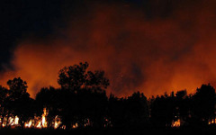 Bushfires are scary as well as deadly.