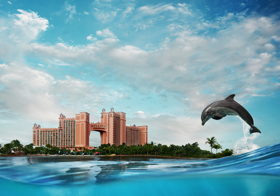 ATLANTIS RESORT : BAHAMAS  print / digital / design