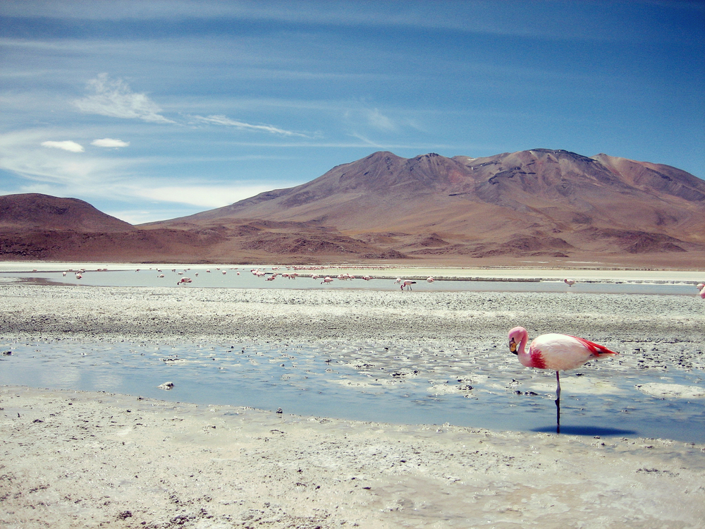 Laguna Verde - The Altiplano, Bolivia