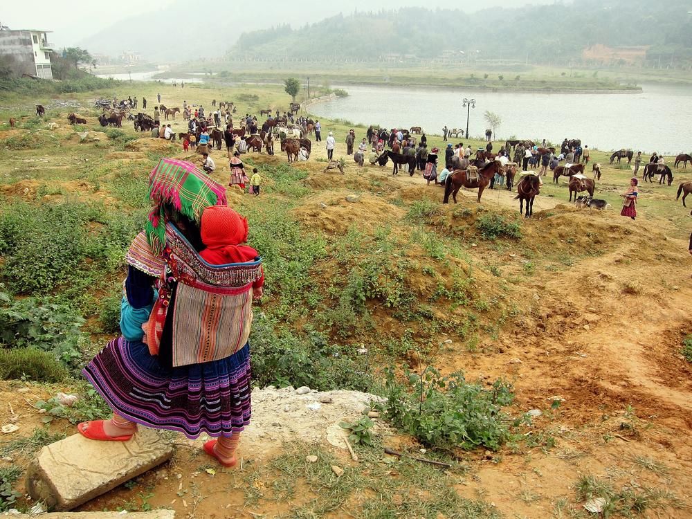 Horse Market - Bac Ha, Vietnam
