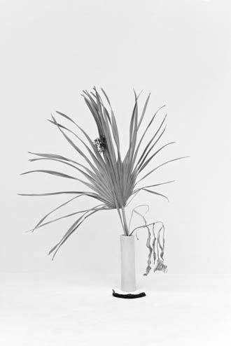 Fig. 16: Ist das die Definition von lyrisch: nicht reproduzierbar? Wir müssten  Ikebana  ausgeben.