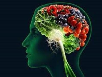 brain food image.jpg