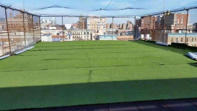 School Rooftop.JPG