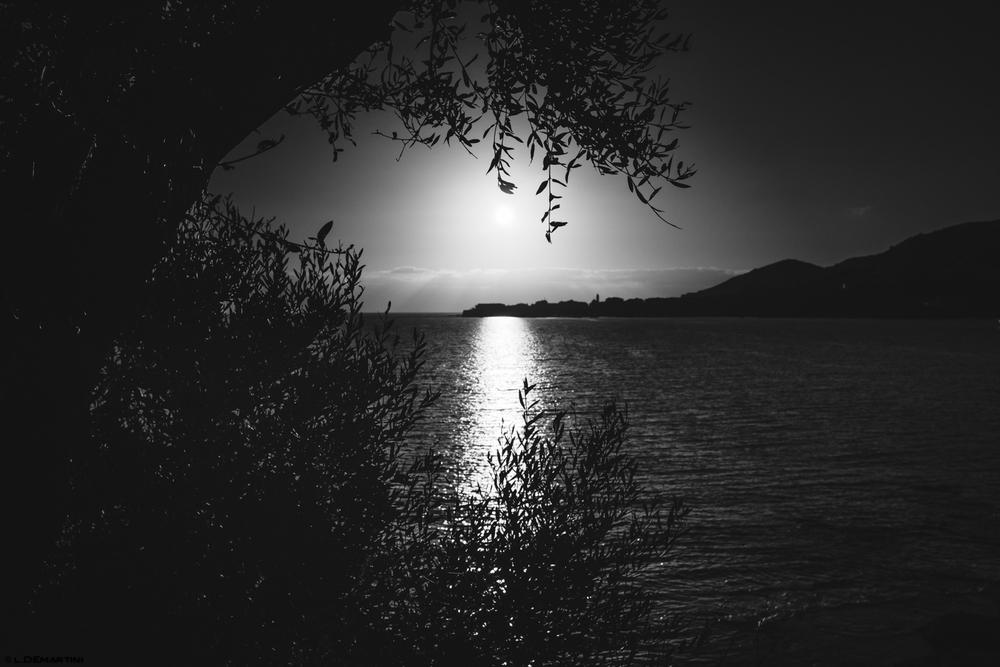22122014-Ajaccio-4.jpg
