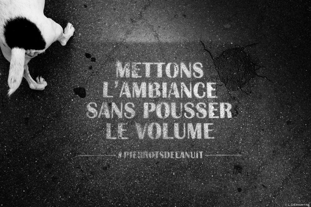 050 - Mon vingtième - by laurentdemartini.com.jpg