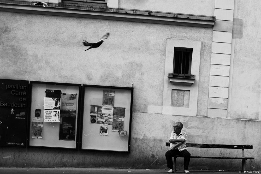 067 - Mon vingtième - by laurentdemartini.com.jpg