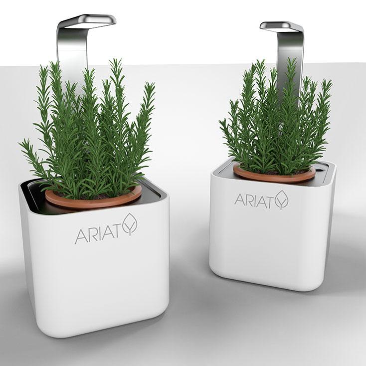PLANT DEVICE DESIGN