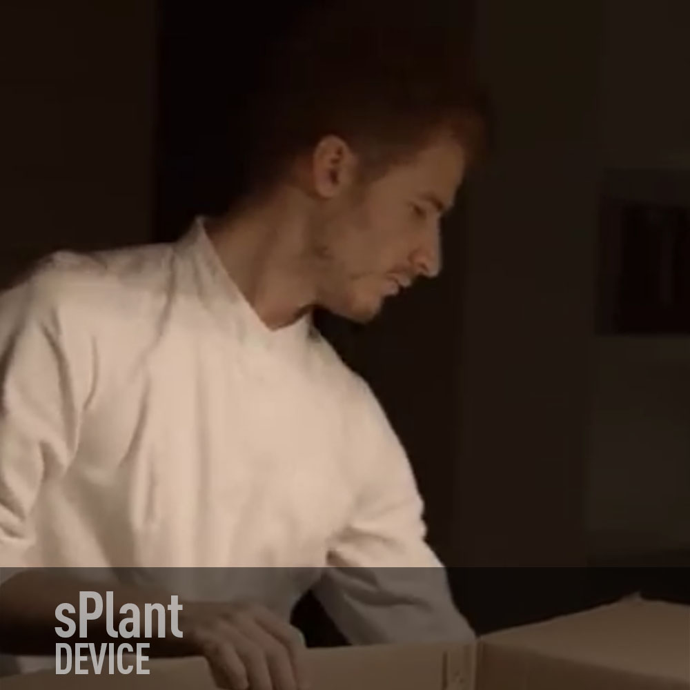 SPLANT KITCHEN