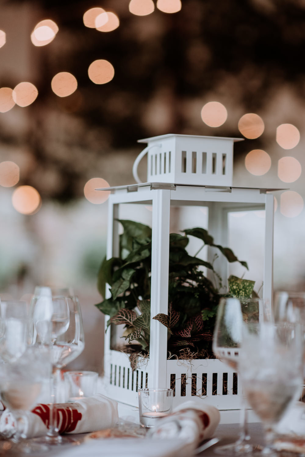 plant lantern reception centerpieces