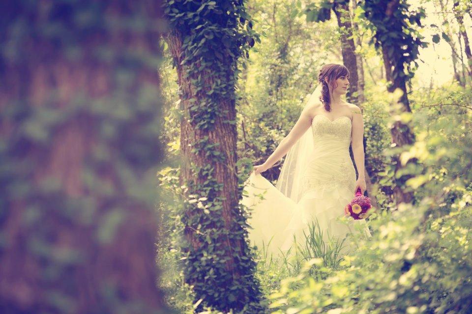 Vibrant Summer Garden, The Garden Room, Miles Witt Boyer Photography, Bouquet