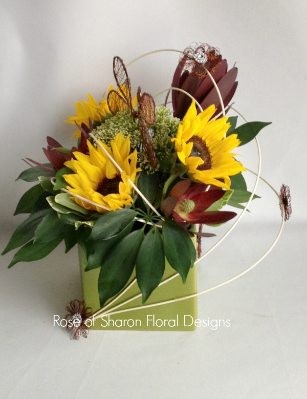 Sunflowers and Leucadendrons, Rose of Sharon Floral Designs