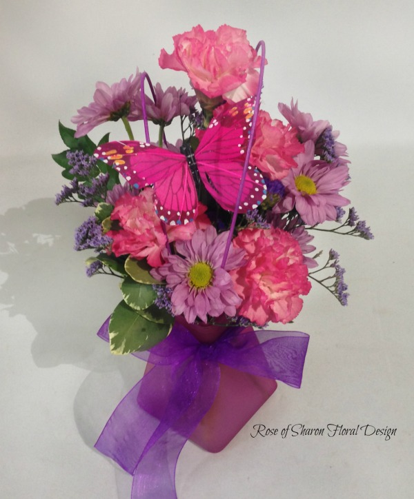 Baby Girl Butterfly Arrangement with Daisies and Carnations, Rose of Sharon Floral Designs