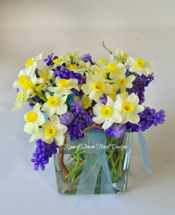 Daffodil and Grape Hyacinth Arrangement, Rose of Sharon Floral Designs