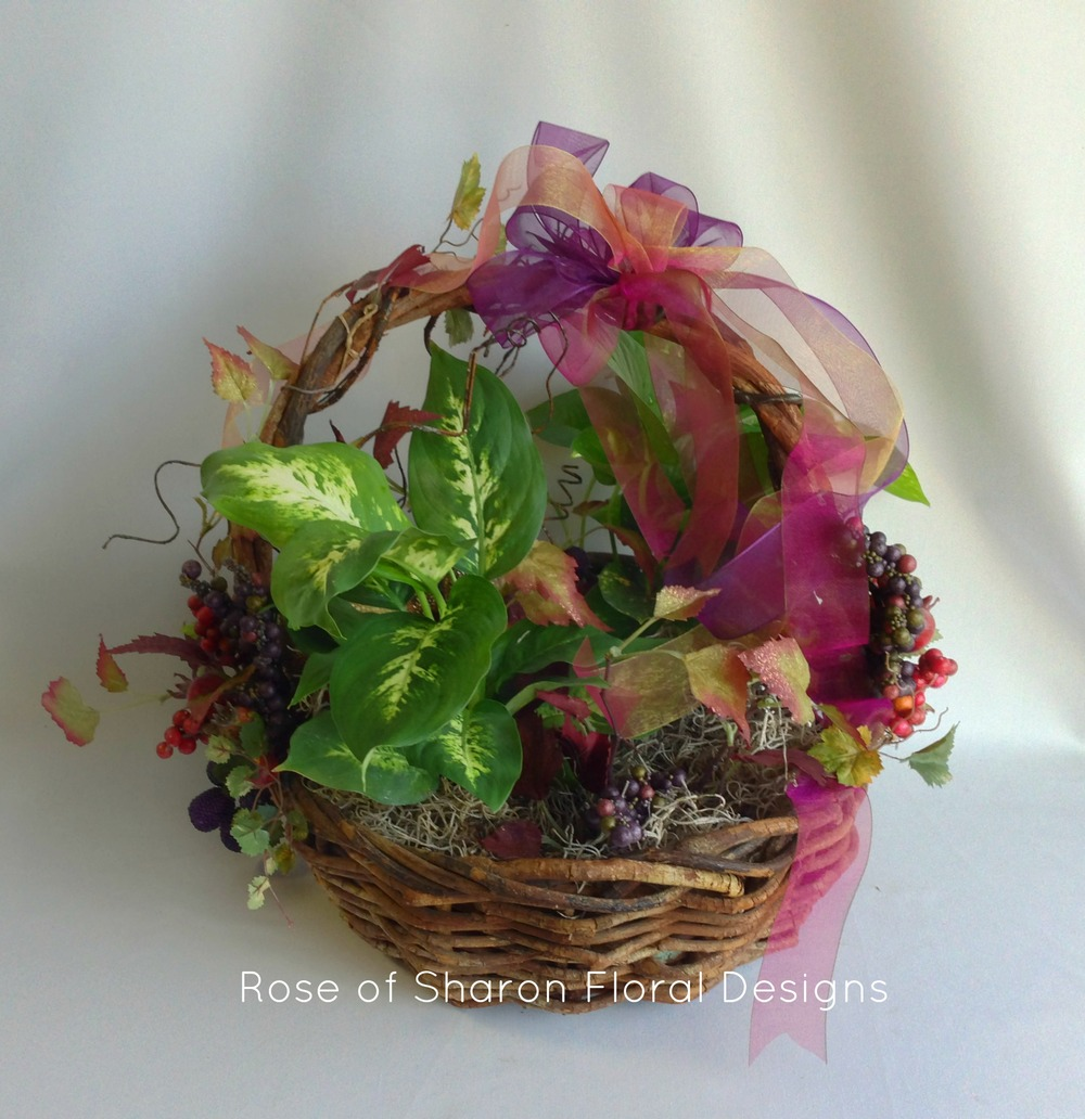 Basket Planter, Rose of Sharon Floral Designs