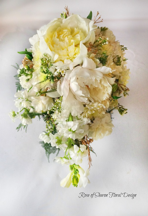 Teardrop Bouquet. White Peonies, Freesia, Wax Flower & Stock. Rose of Sharon Floral Designs