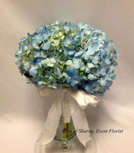 Hand-Tied Blue Hydrangea Bouquet. Rose of Sharon Floral Design