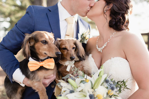 01 Dogs in wedding Mallory Berry Photography Rose of Sharon Floral Designs Stone Chapel at Matt Lane Farms.jpg