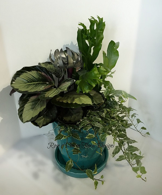 Medium Green Mixed Garden Planter