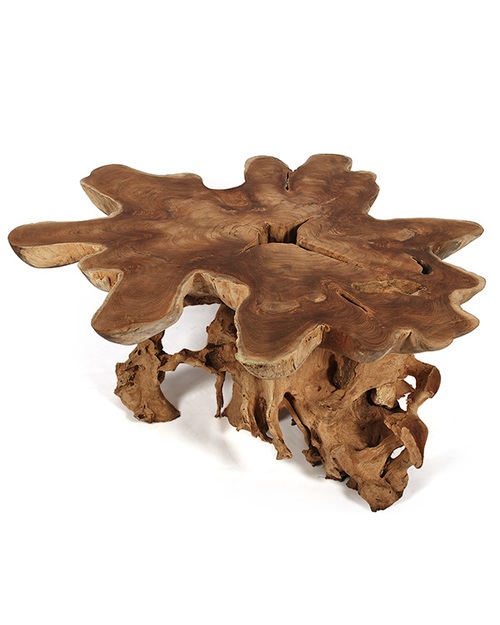 Wooden Root Coffee Table