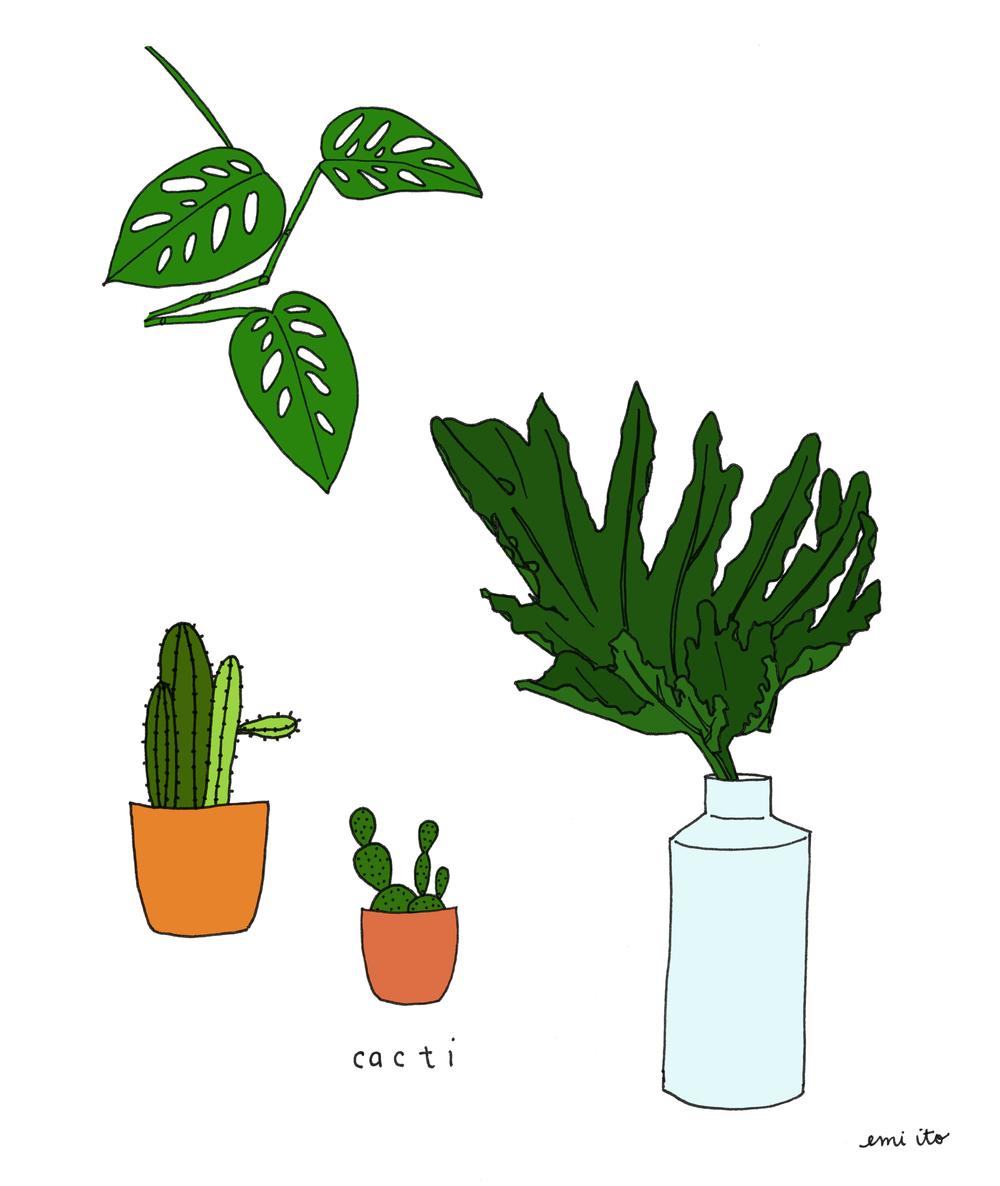 plants - emi ito illustration