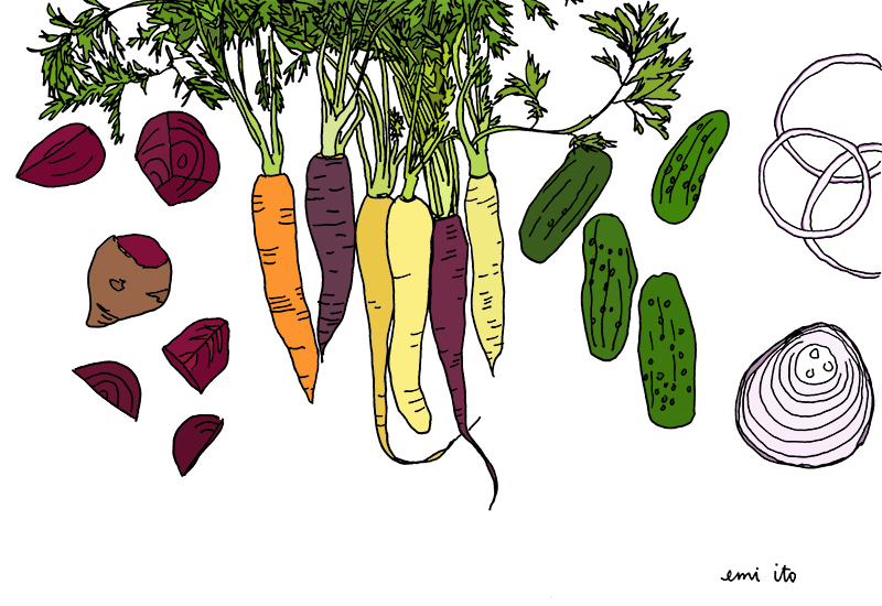 veggies - emi ito illustration