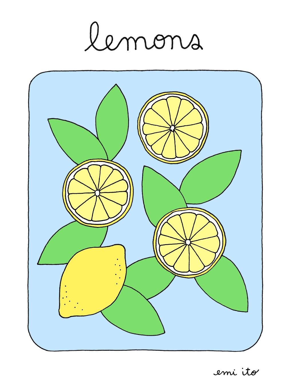 lemons print - emi ito illustration