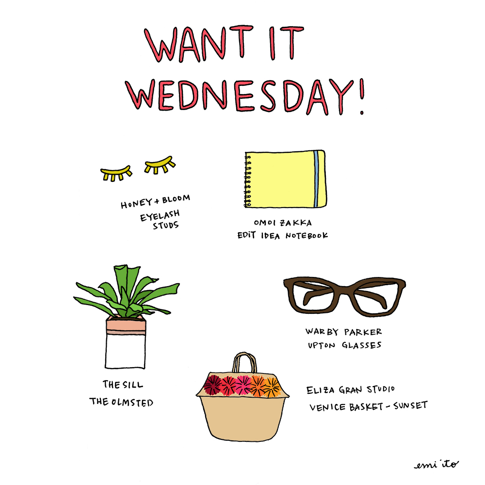 Want It Wednesday - 11.18.2015 - emi ito illustration.jpg