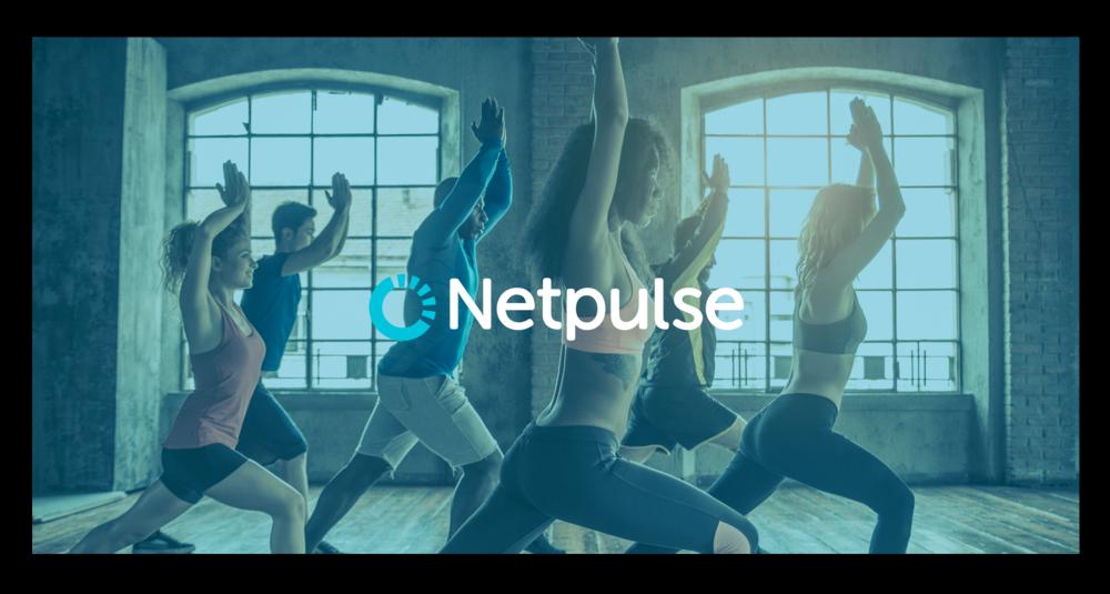 netpulse-banner.png