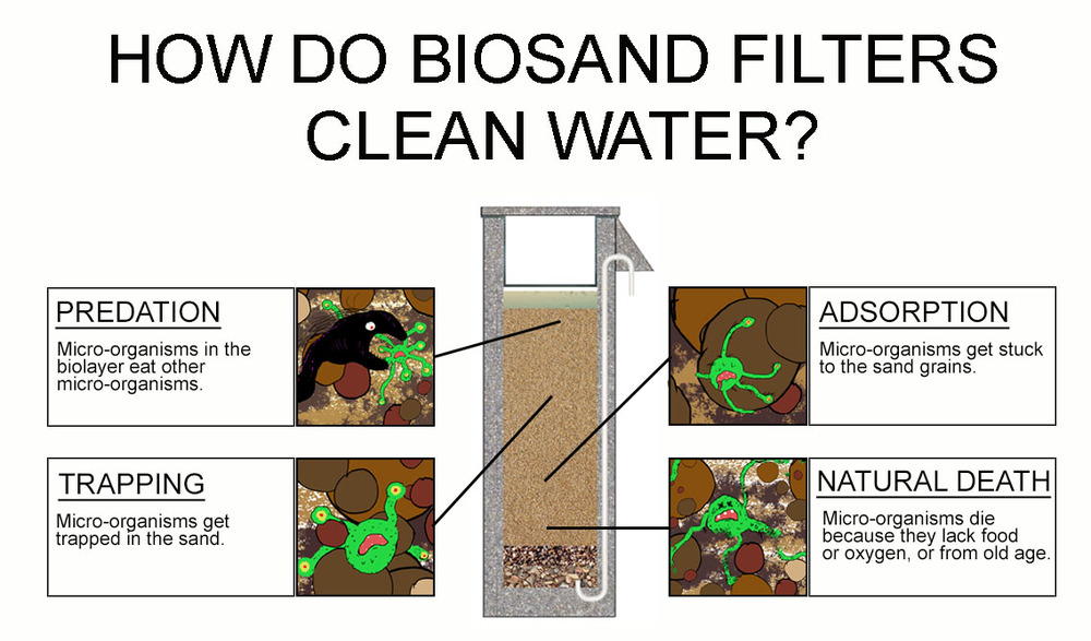 BioSand_Filter_Pathogen_Removal