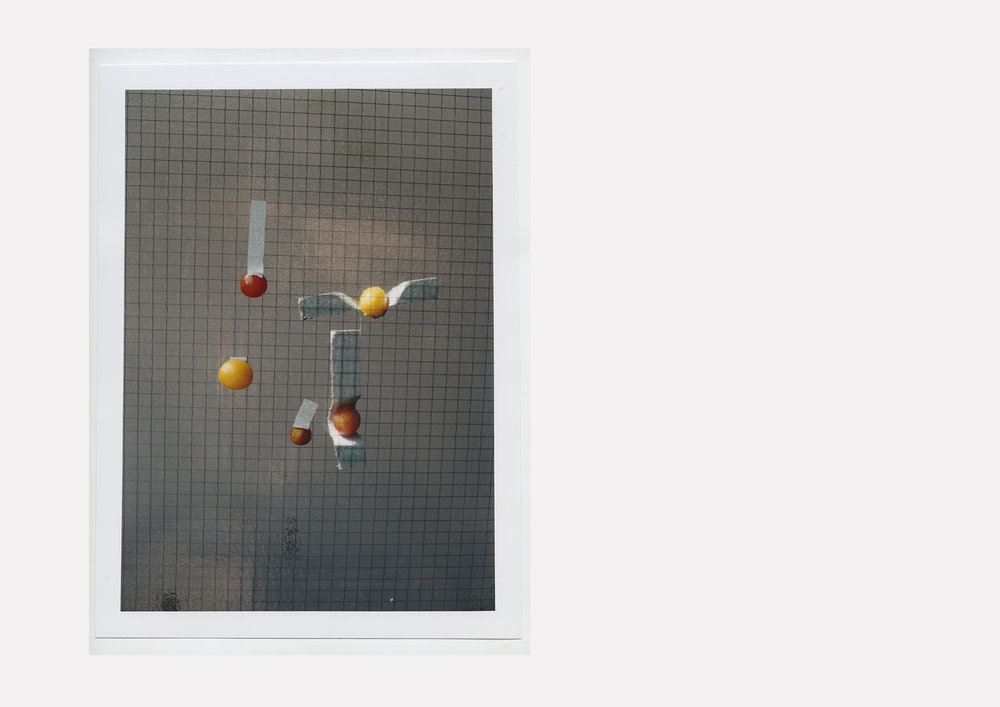From the series 'Plums'