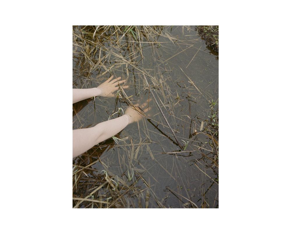 Marshes_24.jpg